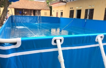 Bể bơi thông minh, KT: 15.6m x 29.1m x 1.2m